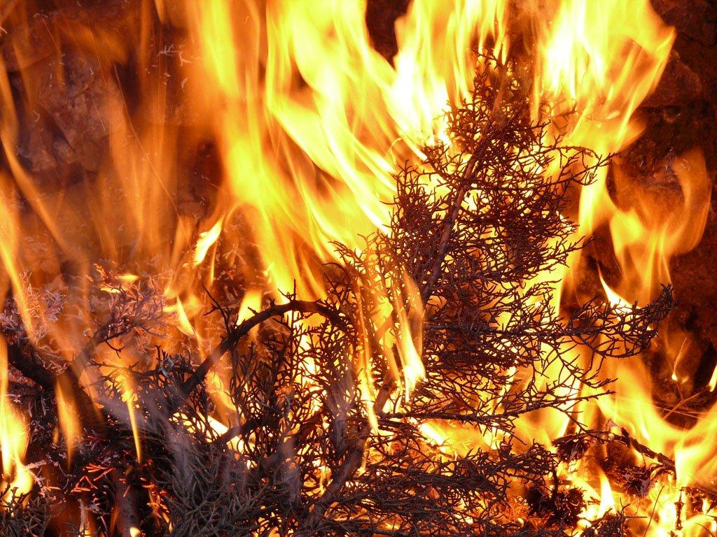 Loita contra os incendios