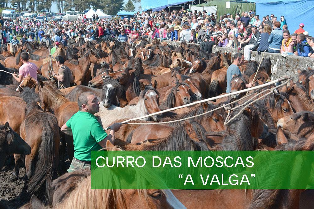 """Curro das moscas: """"A Valga"""""""