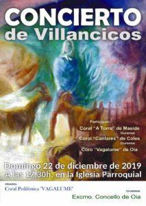 Concerto de Villancicos Oia
